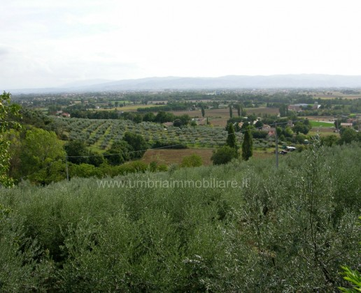 casale-assisi-009_830